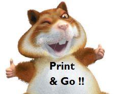 Primeur: Ricoh introduceert printen als retail service, Sinterklaasgedichten printen vanaf smartphone in Albert Heijn van Leersum